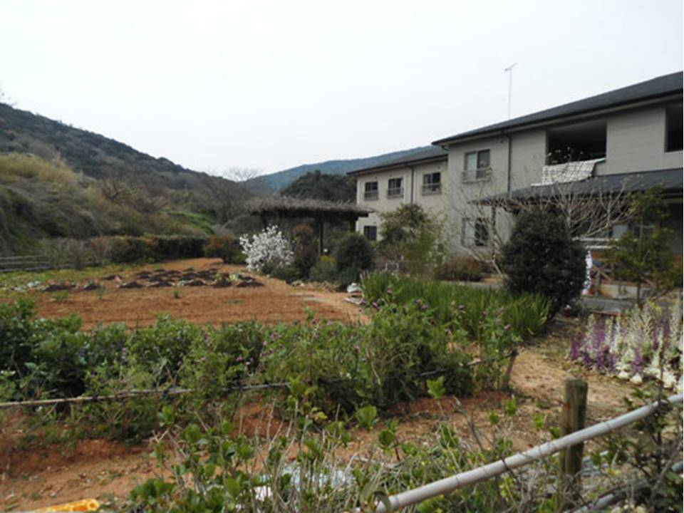 ご入居者様と一緒に季節に沿ったお野菜の収穫が楽しめます